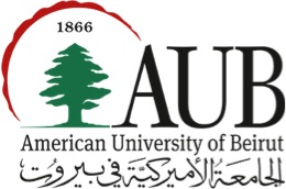 Summer Arabic Program, American University of Beirut