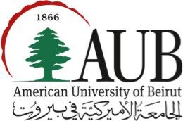 Summer Arabic Program, American University of Beirut