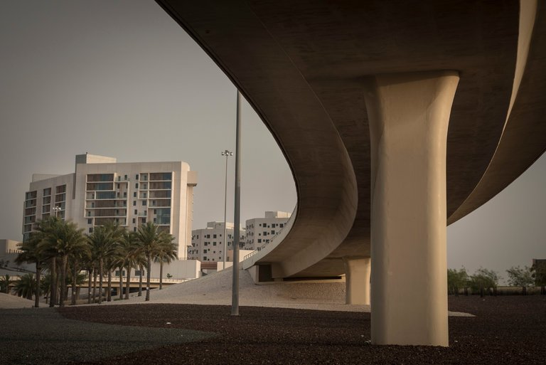 N.Y.U. in Abu Dhabi: A Sectarian Bargain