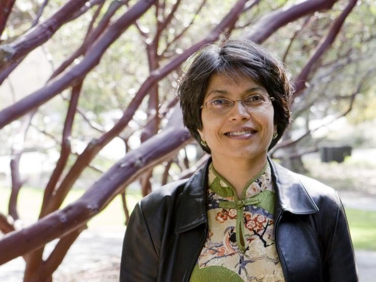 Saba Mahmood, 57, Dies; Traced Intersection of Feminism and Islam