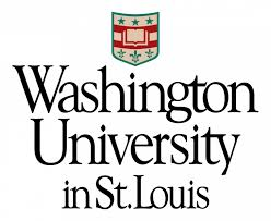 Washington University in St. Louis | Islamic and Near Eastern Studies | MA