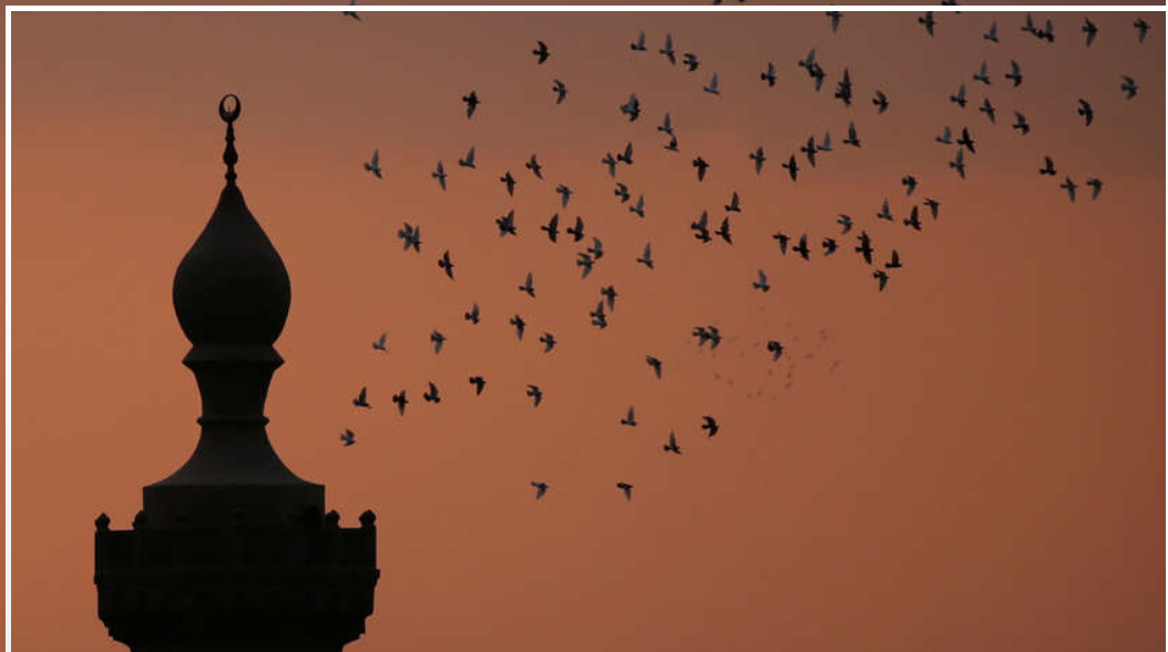 Ministry of Religious Endowment renaming mosques across Egypt