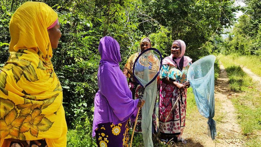 Muslim Women in Kenya Raise Butterflies to Aid Forests