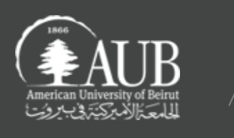Center for Arab and Middle Eastern Studies