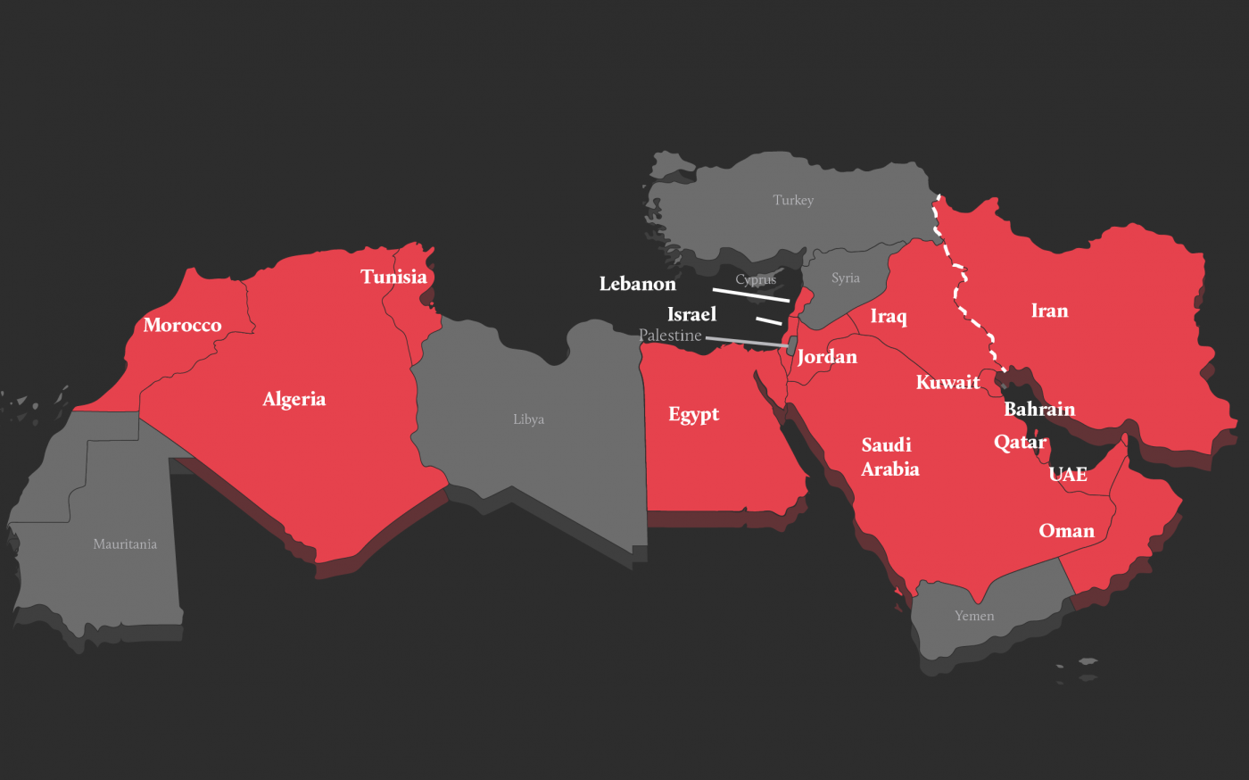Coronavirus in the Middle East and North Africa: What Do We Know so Far?