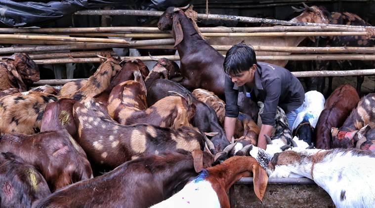 Animal Sacrifice On Bakri Eid Prohibited In Public Places: Ahmedabad Police